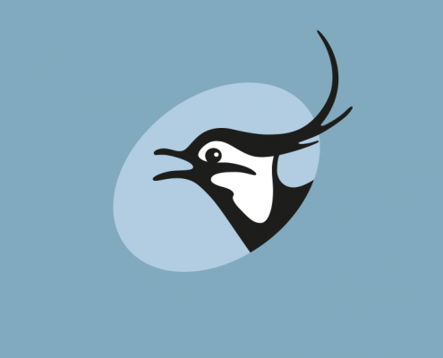 Ovalt logo